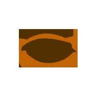 EYELID SURGERY_icon