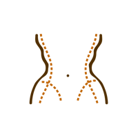 LIPO_BODY_CONTOUR_icon