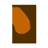 aumento-mama-icon