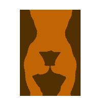 lipoescultura_icon